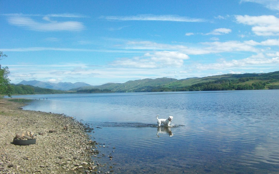 Exploring Argyll: My 2016 Hit List
